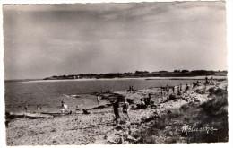 ILE De RE - 17 - Charente Maritime - LES PORTES - La Plage - Ile De Ré