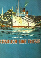 # OCEAN LINER Art Print Stampa Gravure Poster Druck Ship Atlantic Travel Vintage Italy America Trieste Turkey Istanbul - Maritime Decoration