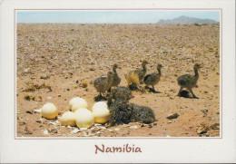 Namibia - Animal - Ostrich Chicks - Nice Stamp - Namibia