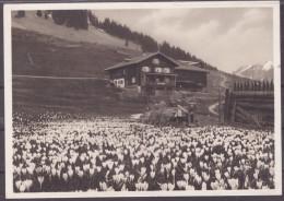 Pany Pension Hartmann - GR Graubünden
