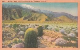 Carte Vers 1920 MOUNT SAN JACINTO FROM THE DESERT , CALIF - Etats-Unis