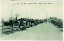 5 Cpa Espagne, Palma De Mallorca - Puerto ( Bateau, Port ), Catedral, .. - Mallorca