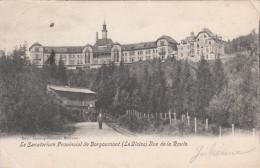 Le Sanatorium Provincial De Borgoumont, Vue De La Route (pk19516) - Stoumont
