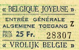 TICKET D'ENTRE  BELGIQUE JOYEUSE  Algemene  Toegang 1958 0 - Toegangskaarten