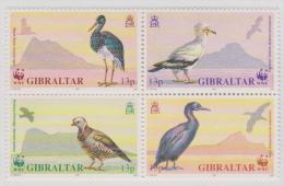 GIBRALTAR - MNH ** 1991 WWF World Wildlife Fund Birds Block Of Four. Panda. Scott 594a - Gibraltar