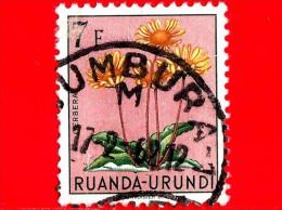 RWANDA-URUNDI - Usato - 1953 - Fiori - Floers - Fleurs - Gerbera - 7 - Ruanda