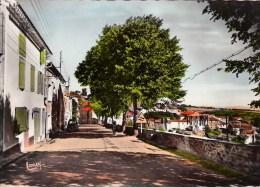 11 - Saissac : Le Faubourg De Cers - CPM Dentelée Neuve - France