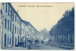 Carte Postale Ancienne Gignac - Avenue De Montpellier - Autres Communes