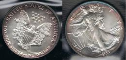 EE.UU.  USA  OUNCE DOLLAR 1991 PLATA SILVER..B9 - EDICIONES FEDERALES