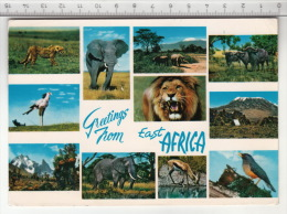 Greetings From East Africa - Tanzanie