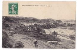 ILE DE NOIRMOUTIER  -  Récolte Du Goëmon - Cliché Rare. - Noirmoutier