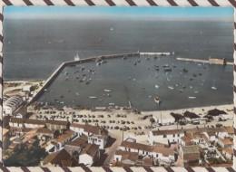 5AH1547 NOIRMOUTIER L'HERBAUDIERE AU DESSUS DE.....2 SCANS - Ile De Noirmoutier