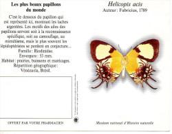CALENDRIER 1995  PHARMACIE  Papillon - Tamaño Pequeño : 1991-00