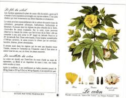 CALENDRIER 1998  PHARMACIE  Le Coton - Tamaño Pequeño : 1991-00
