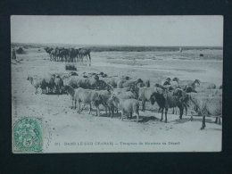 Ref4376 JU CPA Animée Du Sud Oranais (Algérie Oran) - Troupeau De Moutons Au Désert - N°20 - 1906 Edition Idéale PS - Scenes