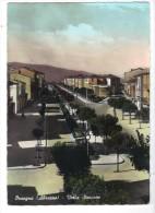 VOL482 - ORSOGNA , Viale Stazione Viaggiata Nel 1961 - Chieti