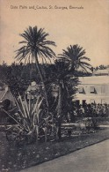 BERMUDA : ST. GEORGES - DATE PALM And CACTUS - ANNÉE / YEAR ~ 1930 / MAILED In 1930 (s-197) - Bermudes