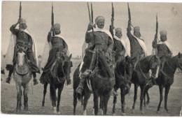 Carte Postale Ancienne De ALGERIE - ALLEE DES BAMBOUS - Scènes & Types