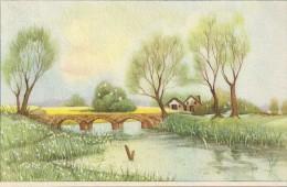 CARTE COLORISEE FANTAISIE Imprimé En BELGIQUE -La Rivière  - ENCH175 - - Fancy Cards
