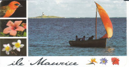 ILE MAURICE .- Retour De La Pêche  à VIEUX GRAND PORT - Mauritius