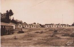 CHANTIERS DE LA JEUNESSE N°20 GROUPEMENT TURENNE LAPLEAU CORREZE GROUPE N° 11      20 - Weltkrieg 1939-45