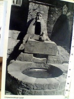 GERMANY  SCHWALENBERG IN LIPPE -   VB1960  EU18237 - Schmallenberg