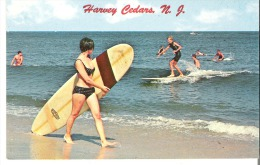 Harvey Cedars, New Jersey  Let's Join The Fun! - United States