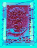 2008 Beaujard Environnement N°4199 (variété Phosphore) Sur Fragment - Variedades Y Curiosidades