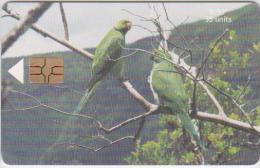 MAURITIUS - BIRD - ECHO PARAKEET - PARROT