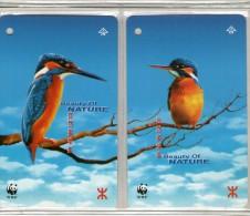 2 Biglietti Trasporti MTR Cina  - Kingfishers  Hong Kong  1995 - Tram