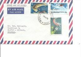 Faune Antarctique ( Lettre Par Avion Des TAA De 1973 Vers La Belgique à Voir) - Antarctic Wildlife