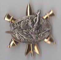 INSIGNE CM 120 CENTRE MOBILISATEUR ARTILLERIE CHAUMONT  - Ballard G 3875 - Esercito