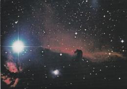 The Horsehead Nebula - Mint Postcard   (G40-82) - Astronomy