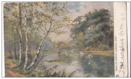 POSTCARD POND ON KESTON COMMON KENT ARTIST DRAWN 1904 POSTMARK - England
