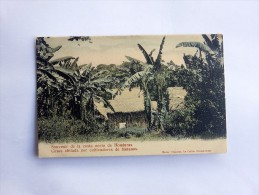 Carte Postale Ancienne : HONDURAS : Casas Abitada Por Cultivadores De Bananos - Honduras