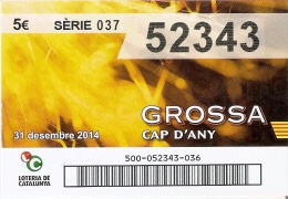 NÚMERO DE LOTERIA DE LA GROSSA DE CAP D´ANY DEL AÑO 2014 (LOTO) AMARILLO - Billetes De Lotería