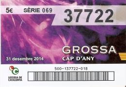 NÚMERO DE LOTERIA DE LA GROSSA DE CAP D´ANY DEL AÑO 2014 (LOTO) VIOLETA - Billetes De Lotería