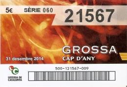 NÚMERO DE LOTERIA DE LA GROSSA DE CAP D´ANY DEL AÑO 2014 (LOTO) ROJO - Billetes De Lotería