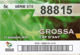 NÚMERO DE LOTERIA DE LA GROSSA DE CAP D´ANY DEL AÑO 2014 (LOTO) VERDE - Billetes De Lotería
