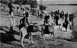 ¤¤  -  1221   -   NIGER    -   NIAMEY   -  La Corvée D'Eau    -  Anes  -  ¤¤ - Niger