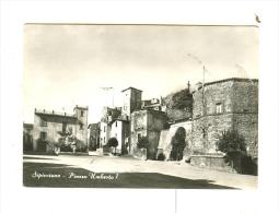 SIPICCIANO,P.za Umberto I-1962 - Viterbo