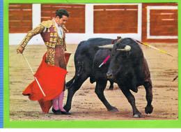 Diego Puerto, 581 - Corrida