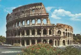 PP1128 - POSTAL - ROMA - IL COLISSEO - Colosseum