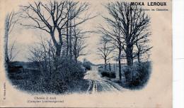 Chemin à Asch (Campine Limbourgeoise) - Niel