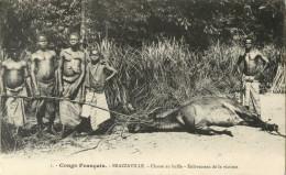 CONGO FRANCAIS -  BRAZZAVILLE - CHASSE AU BUFFLE - ENLEVEMENT DE LA VICTIME - Brazzaville