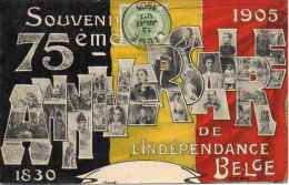 Année, Date - 1905, 75e Anniv Indépendance Belge - Vues Multiples - Belgique