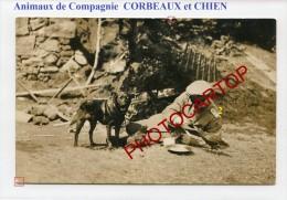 ANIMAUX De Compagnie-CORBEAUX-CHIEN-Soldat-Divertissements-CARTE PHOTO Allemande-Guerre 14-18-1 WK-Militaria- - Oorlog 1914-18