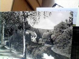 GERMANY ALLEMAGNE  Luftkurort Altensteig Schwarzwald VB1954 EU18329 - Altensteig