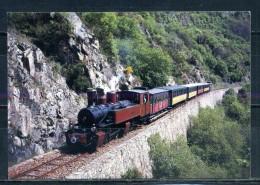 CHEMIN DE FER DU VIVARAIS . LIGNE TOURNON - LAMASTRE . Voir Recto - Verso    (T426) - Trains