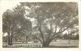 249041-North Dakota, Minot, RPPC, Roosevelt Park, Scenic View - Minot